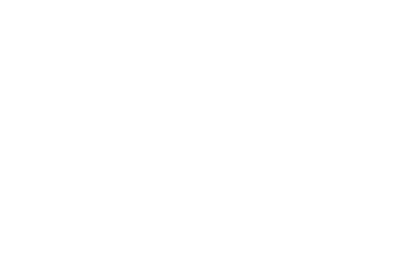 Abeillus