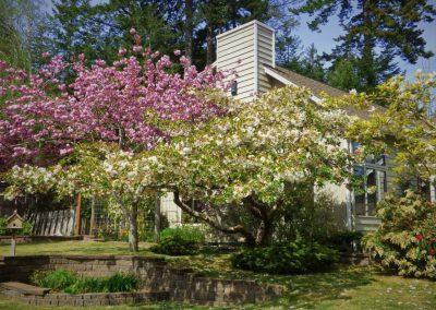 Jardin Anglais en Chevreuse