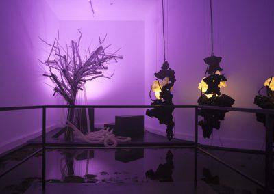 Miroir d'eau Abeillus & Loris Gréaud