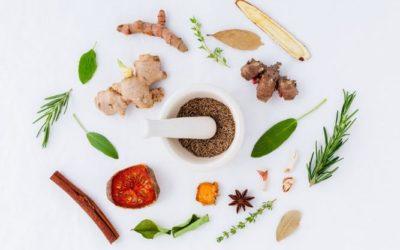 Les vertus des plantes médicinales sur votre santé
